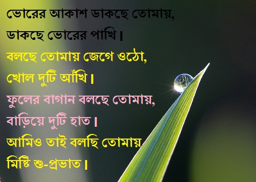 bengali good morning sms pic