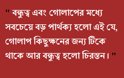 Quote For Everyone Friend Quotes Funny Bangla