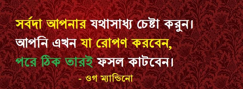 Bangla educational Quotes